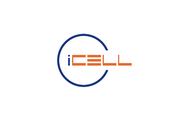 <br />i-Cell, Budapest, Hungary<br /><span>Business Development Support Toll Collection</span>